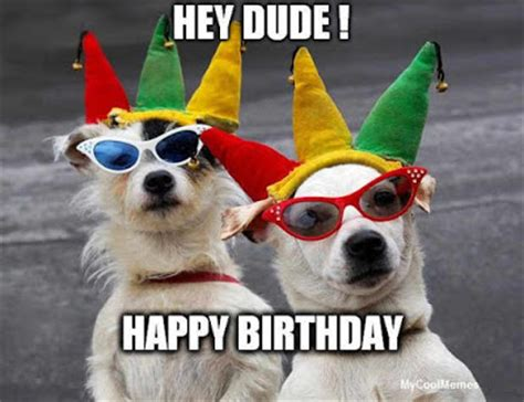 Happy Birthday Meme Dog - funny happy birthday dog meme mycoolmemes