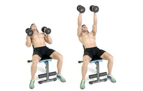 incline bench for shoulders 5 key workouts for the serious bowhunter wide open spaces
