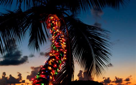 christmas holiday calendar of holiday events in hawaii with starwood hotels