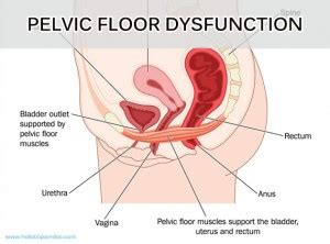 pelvic health issues new shouldn t overlook