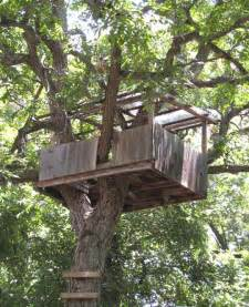 Tree house designs simple tree house design plans simple tree house