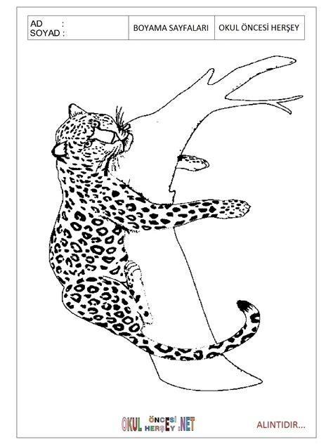 jaguar coloring page for preschool 83 jaguar coloring pages for preschoolers baby