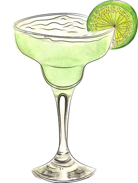 margarita drawing watercolor doodle margarita cocktail vector food free