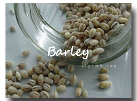 whole grains vitamins and minerals 17 best images about grains on minerals