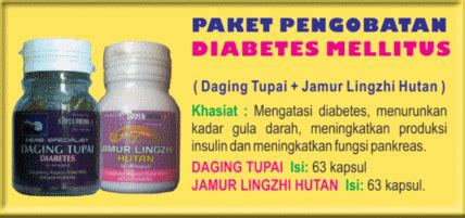 Best Seller Insulfit Herbal Daun Insulin Obat Diabetes 50 Kapsul 24113 asma obat herbal berkhasiat untuk sehat halaman 2