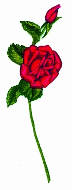 long stem rose embroidery designs machine embroidery