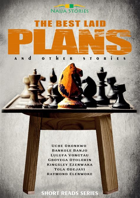 The Best Laid Plans by Stories Seun Odukoya