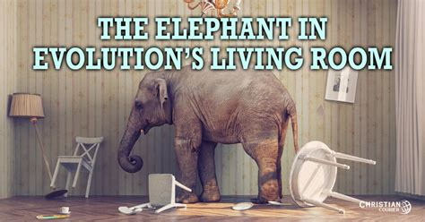 Elephant In Living Room by The Elephant In Evolution S Living Room Christian Courier