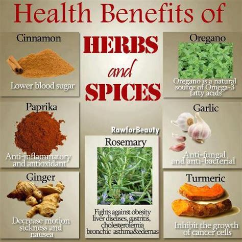 13 Medicinal Herbs And Spices by Tips For A Healthy Beautiful You Benefits Of Common