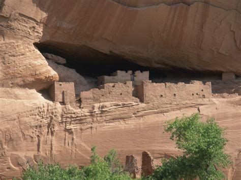 House Design Pictures In South Africa by White House Cliff Dwellings In The Canyon De Chelly In