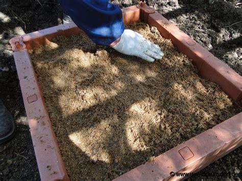 Pilze Im Garten Kultivieren by Gartentagebuch 2011