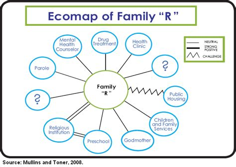 ecomaps social work template center for family policy and practice practitioners