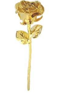 dipped in gold gold dipped gold dipped roses 24k gold dipped roses
