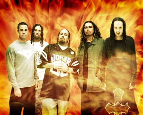 biochimica della nutrizione dispense korn best hits 28 images list of all top korn albums