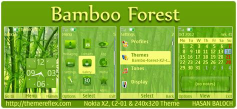 nokia x2 nature themes nature view theme for nokia x2 00 x2 05 c2 01 2700
