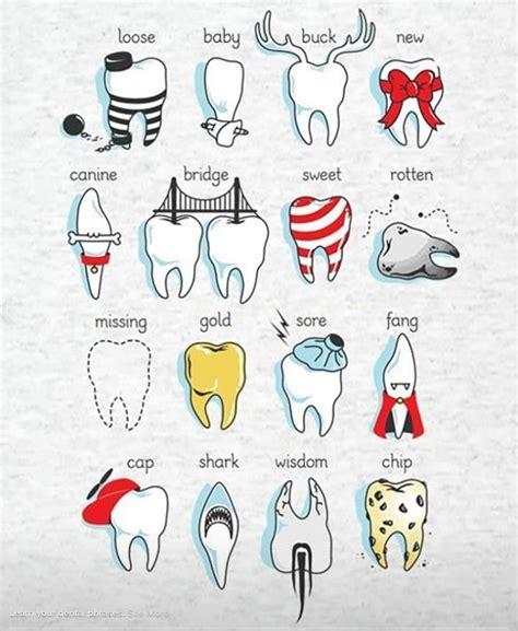 dental facts nicholas  esplin dds