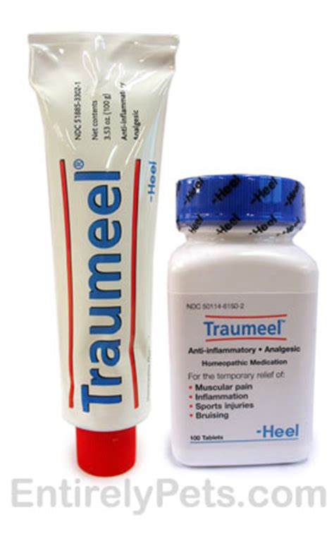 traumeel for dogs traumeel and inflammation relief
