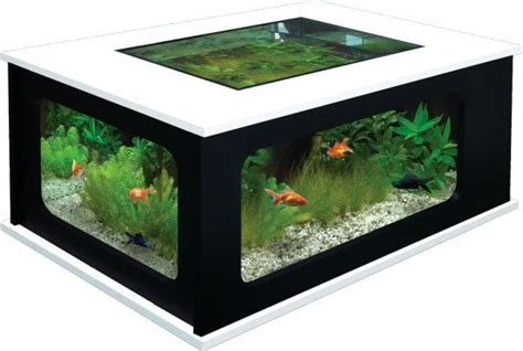 Make Fish Tank Coffee Table PDF Woodworking