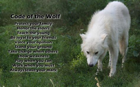 wolves wallpaper border impremedia net