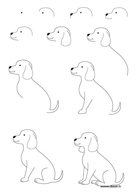 how to draw a puppy step by step the will this how to draw a step by step learn how to