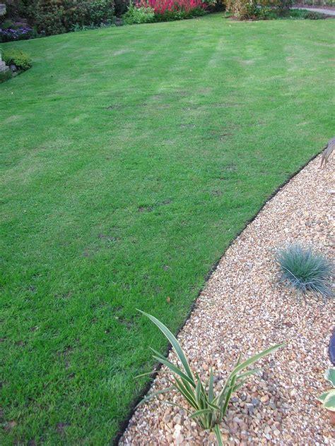 Landscape Edging On Shop Landscape Edging At Lowescom Easy Garden Edging