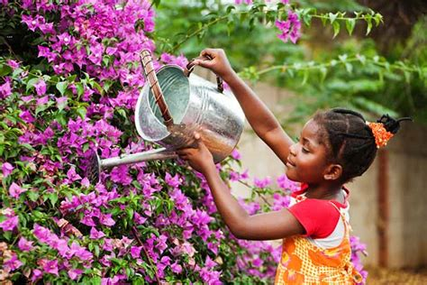 girl watering flowers your go to guide for gardening with children gardener s path
