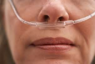 Comfortable Cpap Mask Oxygen Equipment Nasal Cannula 2m Tubing