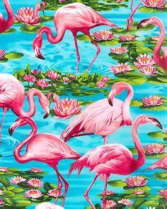 flamingo heaven wallpaper pinterest the world s catalog of ideas
