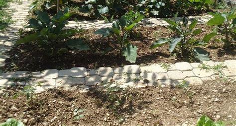 piccolo orto in giardino orto giardino ortaggi orto per giardino