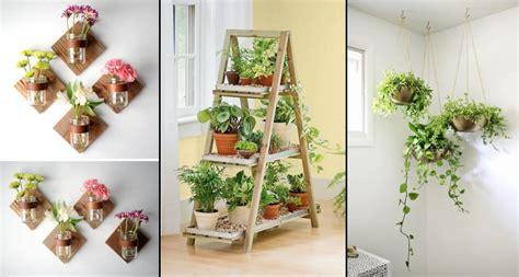 seru menata tanaman hias   ruangan bikin