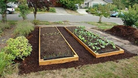 how to start a raised bed garden in your backyard how to build a raised garden bed mnn nature network