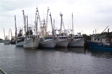 shrimp boat cruise shrimp boats docked as you make your way thru the pass