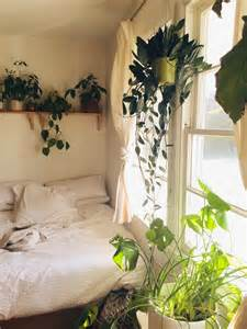 inside home plants apartment bedroom tumblr white bedroom plants home for living inside apartment bedroom plants