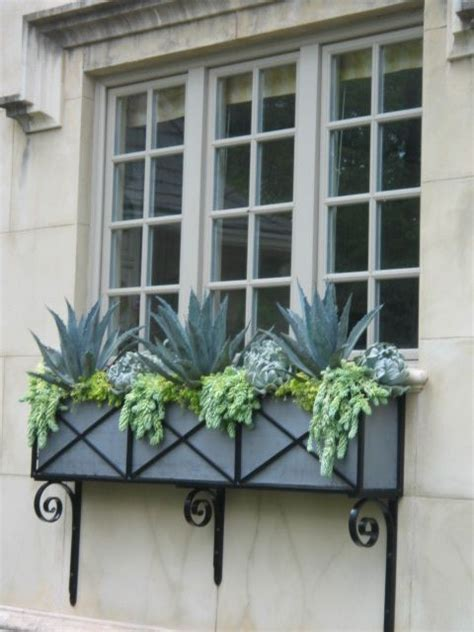 succulent window box succulent window box home sweet home