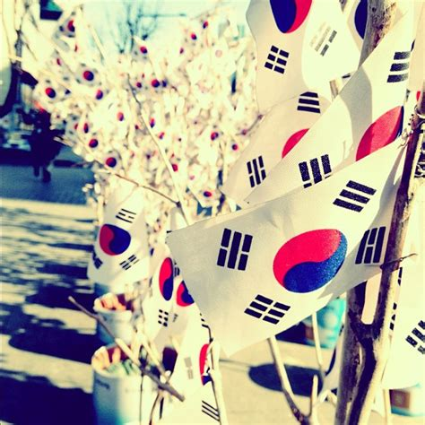 korean themes tumblr free korean flag decorations on lunar new year dominique