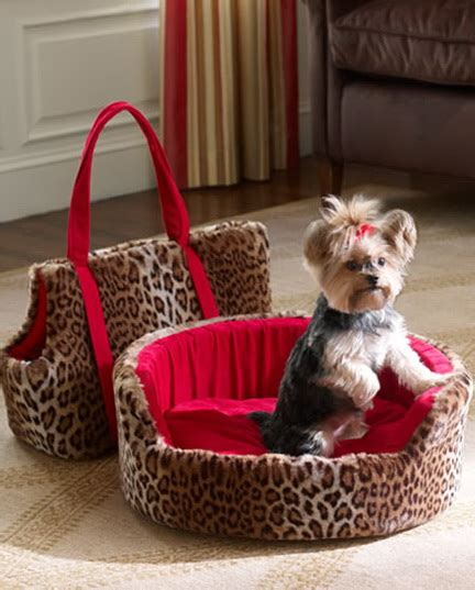 cute dog beds for small dogs cute dog beds for small dogs home design ideas