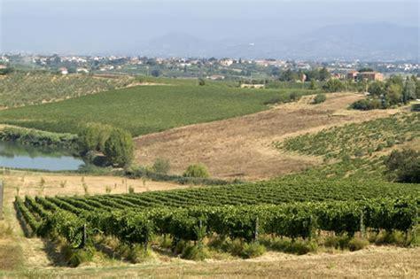 editrici toscana strada olio vino montalbano provincia pistoia
