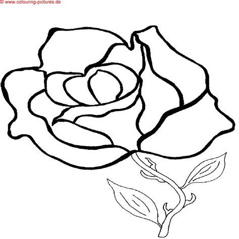 imagenes realistas para colorear ausmalbilder delfine dibujos para colorear imagixs tattoo