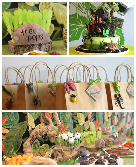 party themes pictures kara s party ideas bug insect birthday party