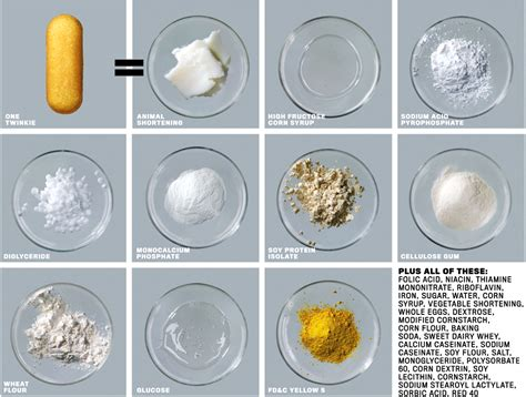 Twinkie Deconstructed by Why Are There So Many Fries Around