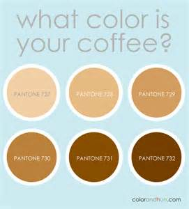 what color is coffee what s your coffee color arden reece color