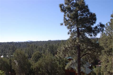 houses for rent in show low az show low arizona the bison condo rental white mountain cabin rentals