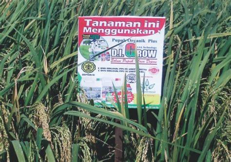 Pupuk Organik Digrow pupuk organik digrow terbukti tingkatkan produksi padi d