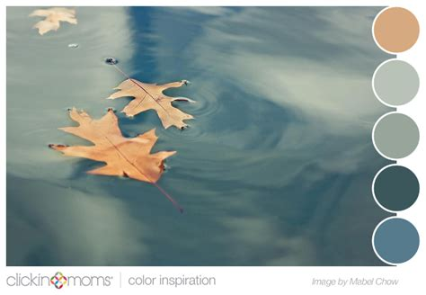 color palette inspiration blue gray and green leaf from