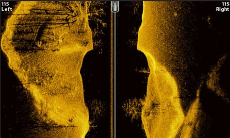 sonar pattern brush humminbird helix 5 side imaging localbrush info