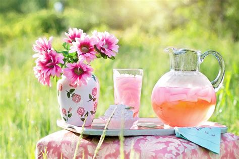flower pink bouquet vase lemonade drink cake pitcher glass summer grass nature hd wallpaper