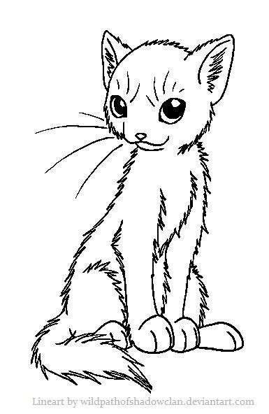 sitting pretty sweet warrior she cat warrior coloring