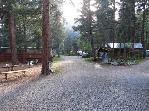 blue spruce rv park cabins updated 2017 reviews