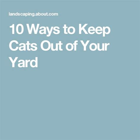 909 Best Images About Gardening On Pinterest Gardens How To Keep Cats Out Of Your Backyard