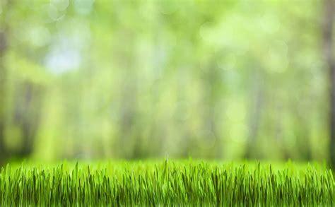 Garden Care Accessories Ltd Yard Works Reading Landscaping